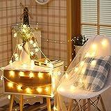 Luci natalizie, anello di fiori, decorazioni natalizie per strade da giardino, lucine, luci con fiocchi di neve Batteria 2m10 LED