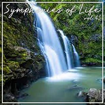 Symphonies of Life, Vol. 43 - Bach: Passio Secundum Johannem, 1768