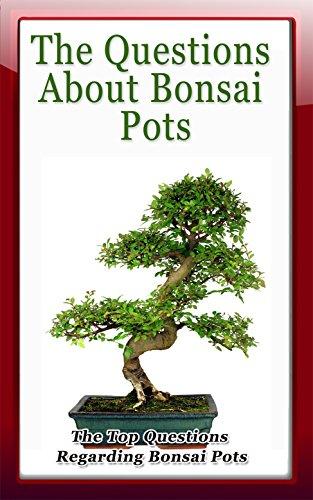 The Questions About Bonsai Pots: The Top Questions Regarding Bonsai Pots