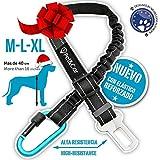 Cinturón de seguridad extensible para arnés de perro. Previene...