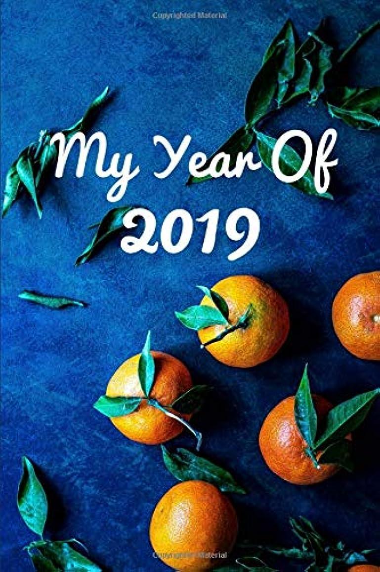 お酒移動アクロバットMy Year Of 2019 Daily Diary Journal. Blank Dated Planner Notebook.