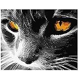 Zhxx Pintar Por Numeros Rotulador Negro Blanco Barbudo Gato Animal Digital Moderno Arte De La Pared Pintura De La Lona Regalo Decoración Para El Hogar 40X50Cm Sin Marco