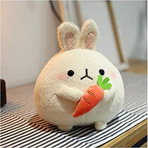 Emishin Ragazza del Regalo del Compleanno dei Bambini della Bambola dei Bambini della Bambola del Coniglio della Carota del Giocattolo della Peluche Sveglio con Il Coniglio Carino su Bianco