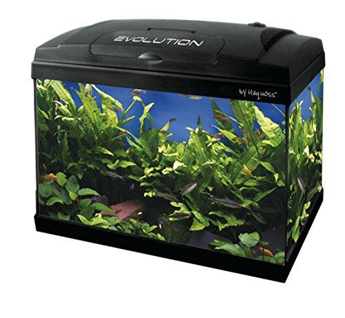 Haquoss, Evolution 40 Aquarium - Dimensions : 40 x 25 x 34 (H) cm, d'Une capacité de 21 litres, avec Lampe LED de 4 Watt - Entièrement équipé d'Accessoires - Version Luxury