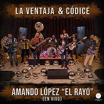 """Amando López """"El Rayo"""" (En Vivo)"""