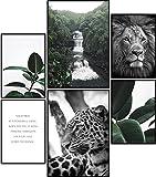 ARTORIA | Premium Poster Set - Wilde Natur | Ohne Rahmen |