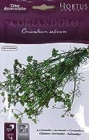 【輸入種子】 HORTUS Aroma Vivo Coriandolo コリアンダー ホルタス社