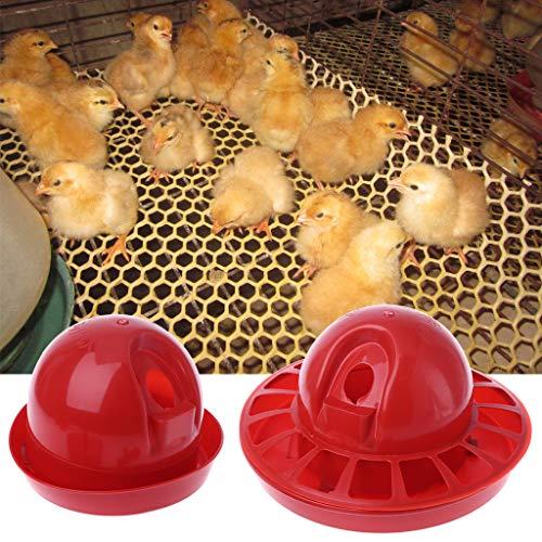 Comparación de Las 10 Mejores Comederos Para Pollos