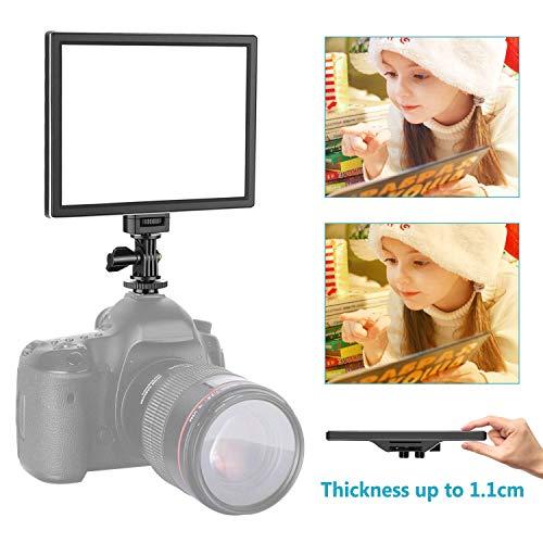 Neewer Kamera/Camcorder Videoleuchte SMD LED Licht Feld, 3200K bis 5600K Farbtemperatur und dimmbare Licht Ultra dünn T100 (Batterie Nicht im Lieferumfang enthalten)