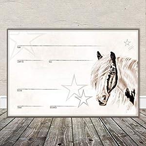 Boxenschild Stallschild Stalltafel Namensschild Pferd 'Tinker, Schecke, Pinto, Paint Horse' 20x30cm Alu