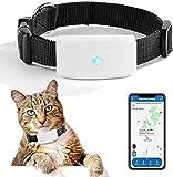 ZEERKEER Pet GPS Tracker Dog GPS Tracker and Pet Finder Waterproof Activity Monitor Tracking Device for Dogs, Cats, Pets, Kids, Elders, APP Control
