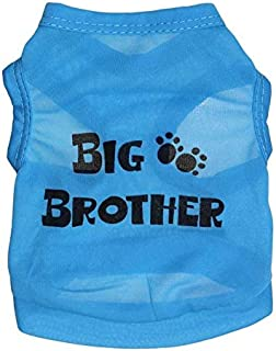 Ollypet Dog Shirt for Small Dogs Sayings Design Big Brother Blue