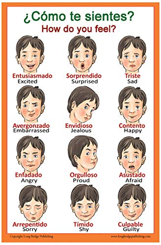 Spanish Language School Poster - Words About Feelings - Wall Chart for Home and Classroom - Bilingual: Spanish and English Text (18x24 inches)