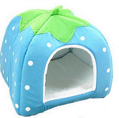 Da.Wa 1 hamac en coton chaud pour hamster et rat - Motif fraise - Taille XL - Bleu ciel.