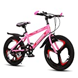 FUFU Bicicleta al Aire Libre 21-Velocidad Ajustable, Bicicleta for niños de 20 Pulgadas, Adecuado for niños y niñas de 9 a 14 años. (Color : Pink)