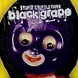 Songtexte von Black Grape - Stupid Stupid Stupid