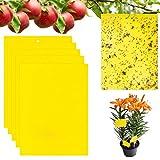Lnmyic 30 trappole adesive per insetti, colore giallo, contro le zanzare, contro le zanzare, contro le trappole adesive per mosche, afidi, insetti vegetali, zanzare funghi, 15 cm x 20 cm
