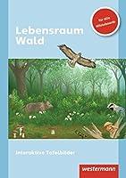 Lebensraum Wald. CD-ROM: Einzelplatzlizenz