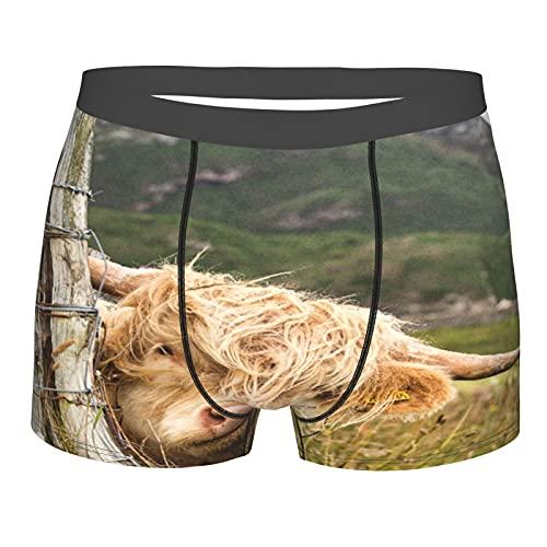 Nongmei Herrenunterwäsche, Schottische Highlander In Schottland,Boxershorts Atmungsaktive Komfort Unterhose Größe M