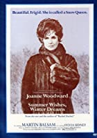 Summer Wishes Winter Dreams [DVD]