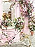 Dipingere Con I Numeri Cesto Di Fiori Per Biciclette Con Spazzole Paint By Number Kit Natalizie Decorazioni Regali 16 * 20 Pollici40X50Cm