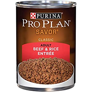 Purina Pro Plan Pate Wet Dog Food, SAVOR Beef & Rice Entree – (12) 13 oz. Cans
