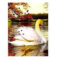 DIYペイント 数字 キャンバス油絵 DIY絵 デジタル油絵 動物の白鳥-16x20インチ(フレームレス)