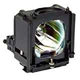 Electrified BP96-01472A-ELE29 Replacement Lamp with Housing for HL-S6187WX/XAA Samsung Televisions