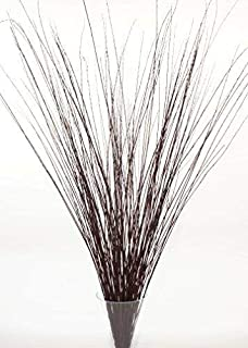 Green Floral Crafts | 4-5 Ft Burgundy Brown Asian Willow Stems