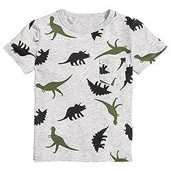 5. Runytek Toddler Boys Dinosaur Print Graphic Tee