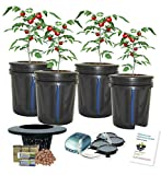 Hydroponic Bucket Bubbler Complete Grow System Kit