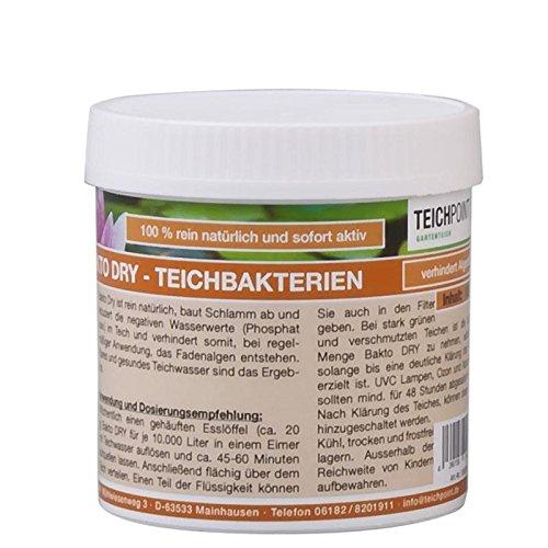 Teichpoint 100 g Bakto Dry Teich - Billionen von Mikro-Organismen