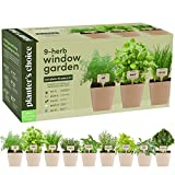 9 Herb Window Garden - Indoor Organic Herb Growing Kit - Kitchen Windowsill Starter Kit - ...