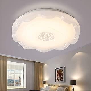 BAYCHEER Ceiling Lighting Fixtures Modern Acrylic Ceiling Mount Lighting 15inch Round Shape Flush Mount Light for Bedroom Living Room Study Room White (Warm Light)
