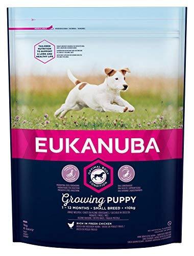 Eukanuba Puppy Nourriture pour Chiots de Petite Race avec Nouvelle recette Améliorée - Nourriture Sèche, âgés de 1 à 12 mois à la Saveur de Poulet 1kg