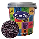 Lyra Pet Bedarf für Hausvögel