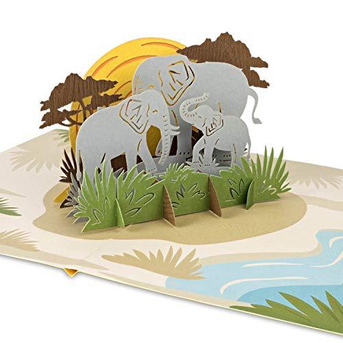PaperCrush® Pop-Up Karte Elefanten [NEU!] - 3D Geburtstagskarte mit Elefant für Kindergeburtstag, Glückwunschkarte für Kinder (Mädchen und Jungen) - Gutschein für Safari inkl. Umschlag