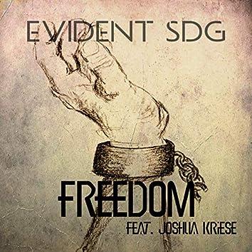 Freedom (feat. Joshua Kriese)
