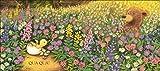 Immagine 2 primavera orsetto
