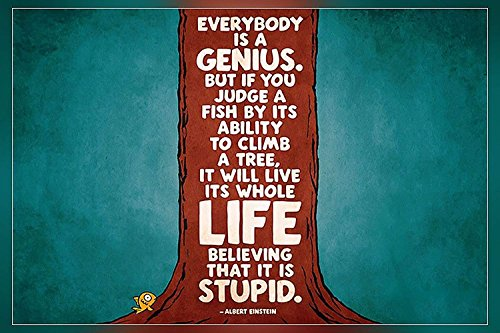 zolto poster Everybody is a genius….Albert Einstein Poster 12 x18 inch
