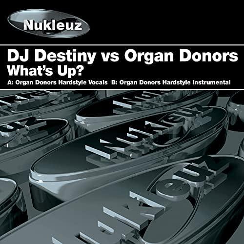 DJ Destiny & Organ Donors