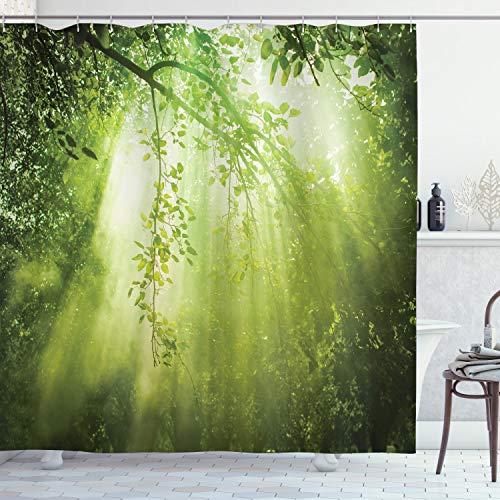 ABAKUHAUS Wald Duschvorhang, Sunbeams in Woodland, Hochwertig mit 12 Haken Set Pflegeleicht Farbfest Wasser Bakterie Resistent, 175 x 200 cm, Grün