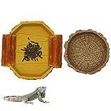 Juego de cuencos para comida y agua, reptiles y anfibios, contenedores de agua y alimentos para tortuga, rana, serpiente, caracol Gecko dragón barbudo