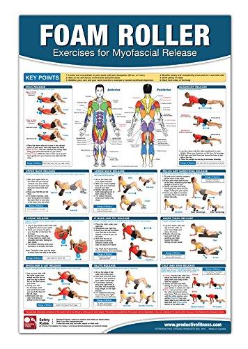 Foam Roller / Myofascial Release Chart Poster, Muscle Massage, Myofascial Release Poster, Muscle...