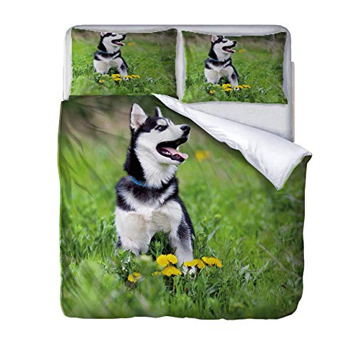 3D Printed Duvet Quilt Cover Soft Microfiber Quilt Cover with 2 Matching Pillow Case Complete Bedding Set Zipper Closure Single Double King Size Fun Bedding Husky-220 x 230cm
