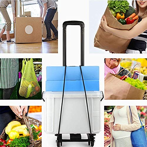 Swadhin Foldable Plastic Collapsible Hand Truck 25 kg Luggage Cart Travelling Collapsible Luggage Trolley Cart with 2 Wheels for Travel Moving and Office Use-Black