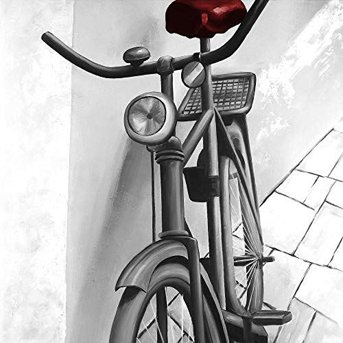 Best Bargain BEGIN DECO MAISON - HOME DECOR 2080-2424-TR60-1 Abandoned Bicycle, Fine Art Gallery Wra...