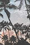 Bitcoin Cryptocurrency & Digital Assets: Retro Palm Trees: Offline Security and Private Key and Recovery Phrase Passwords Logbook Notebook Ledger: 24+ ... Index System Discreet Design: 6'x9' 150 Pages