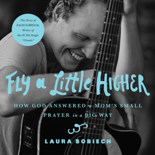 Fly a Little Higher audiobook cover art