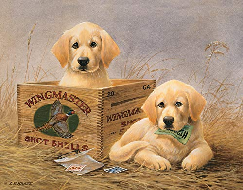 "Desperate Enterprises Kaatz - Wingmasters Tin Sign, 16"" W x 12.5"" H"